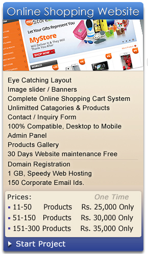 Online Shopping Website Designer